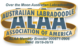 Australian Labradoodles Association of America