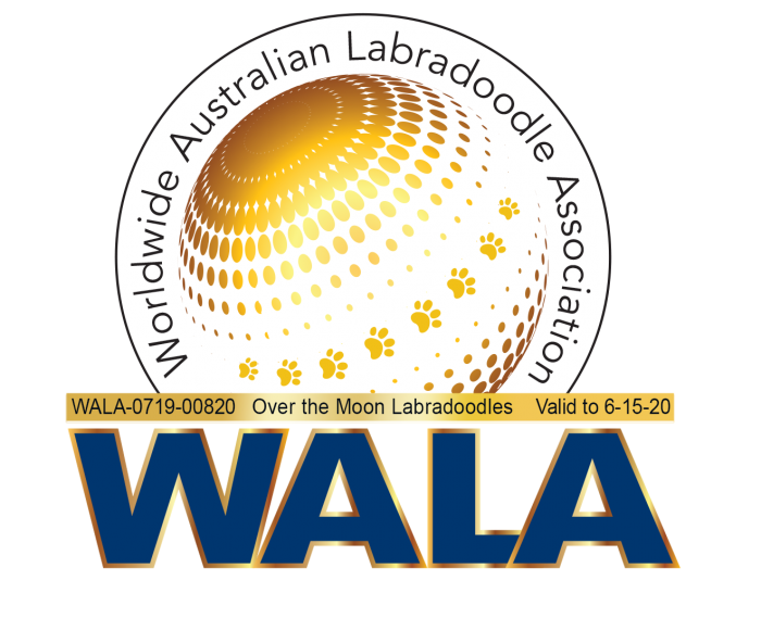 World Labradoodles Association Logo